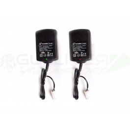 Chargeur intelligent pour batteries Ni-MH